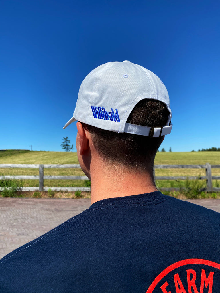 Where the F*** is Ayr? Dad Hat - Willibald