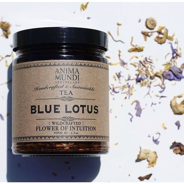 Blue Lotus - Flower of Intuition Tea Anima Mundi - La Flora Sagrada