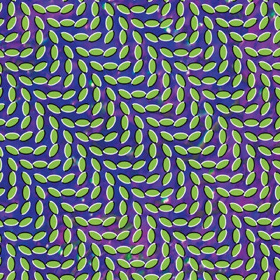ANIMAL COLLECTIVE MERRIWEATHER POST PAVALLION