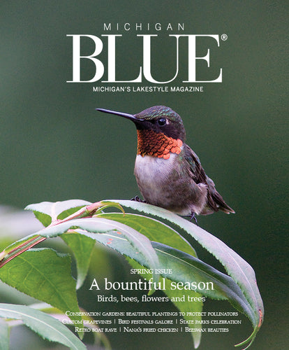 SINGLE ISSUE - Michigan BLUE Magazine, Spring 2019 issue