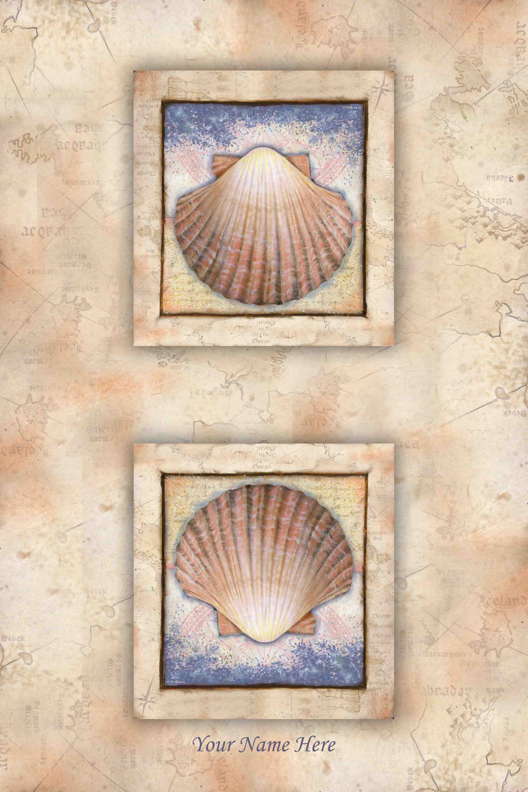 Scallop Shell Kitchen Towel