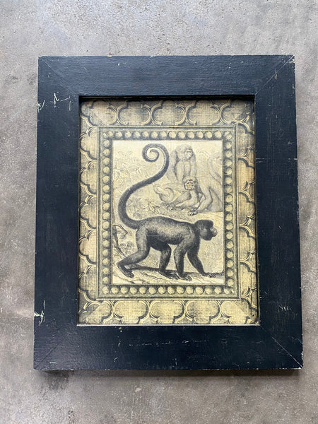Interesting Print Depicting Monkeys in Great Vintage Frame