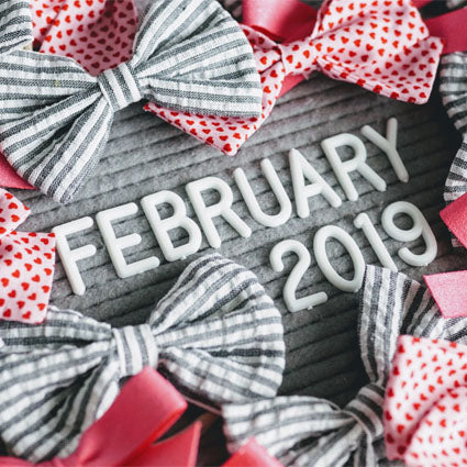 February 2019 Bows