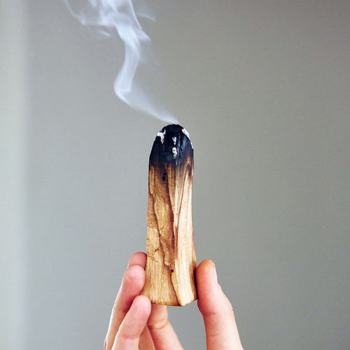 Palo Santo Smudge/Incense Sticks