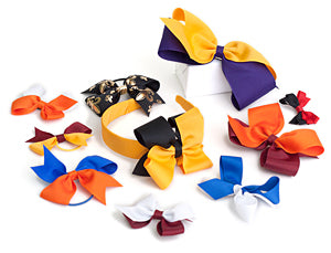 Bows in Sports Colors