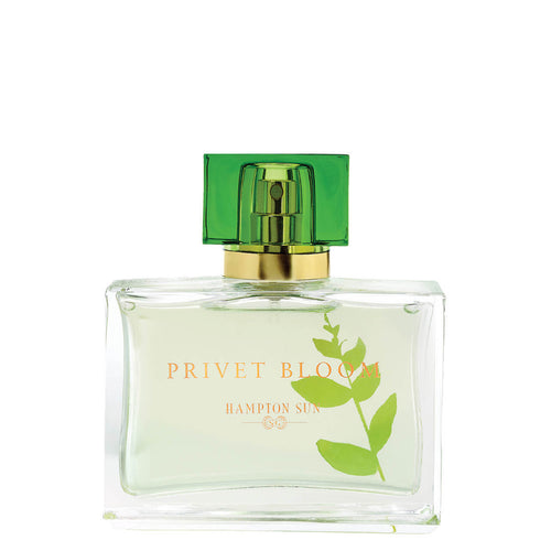 ahmadnabeel - Hampton Sun - Privet Bloom Eau de Parfum