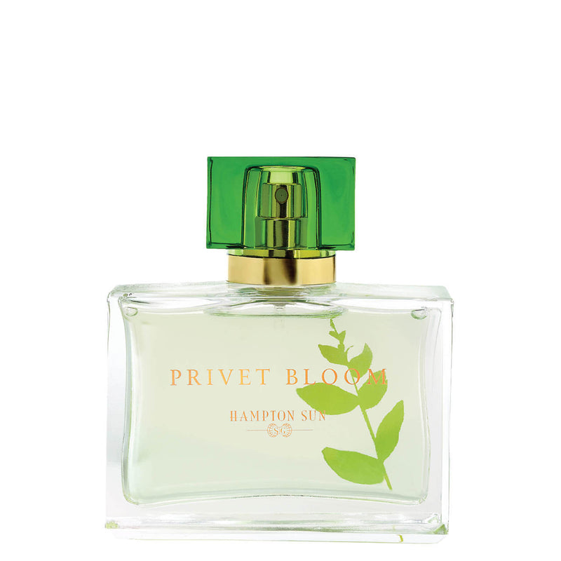Privet Bloom Eau de Parfum - The Beauty Editor