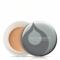 Phyto-Pigments Perfecting Concealer - The Beauty Editor