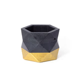 Concrete Geometric Planter: Black & Gold (Medium)