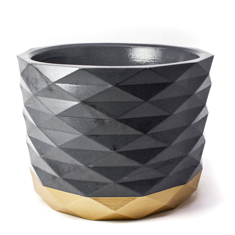 Concrete Archimedes Planter: Black & Gold