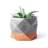 Concrete Geometric Planter: Bronze Large