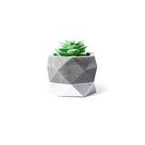Concrete Geometric Planter: Silver Medium