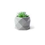 Concrete Geometric Planter: Medium