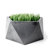 Concrete Icosahedron Planter: Carbon Black X-Large