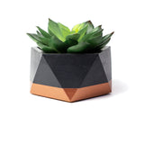 Concrete Icosahedron Planter: Black & Bronze Small