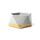 Concrete Icosahedron Planter: Gold Small