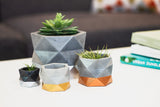 Concrete Geometric Planter: Gold Medium