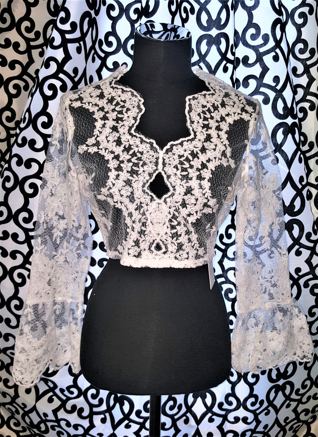 Lace Long Sleeved / Sheer Top