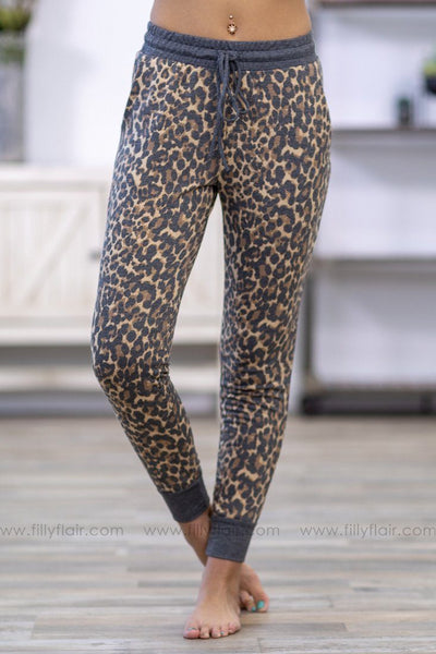 Good Things In Life Leopard Joggers in Brown Charcoal - Filly Flair
