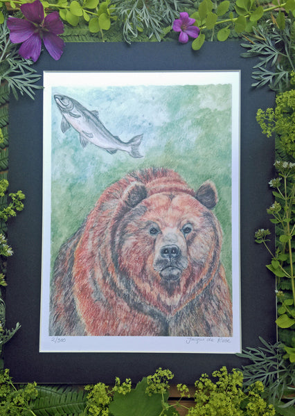 Limited Edition - Signed - Giclee Print - A - Bear and Salmon