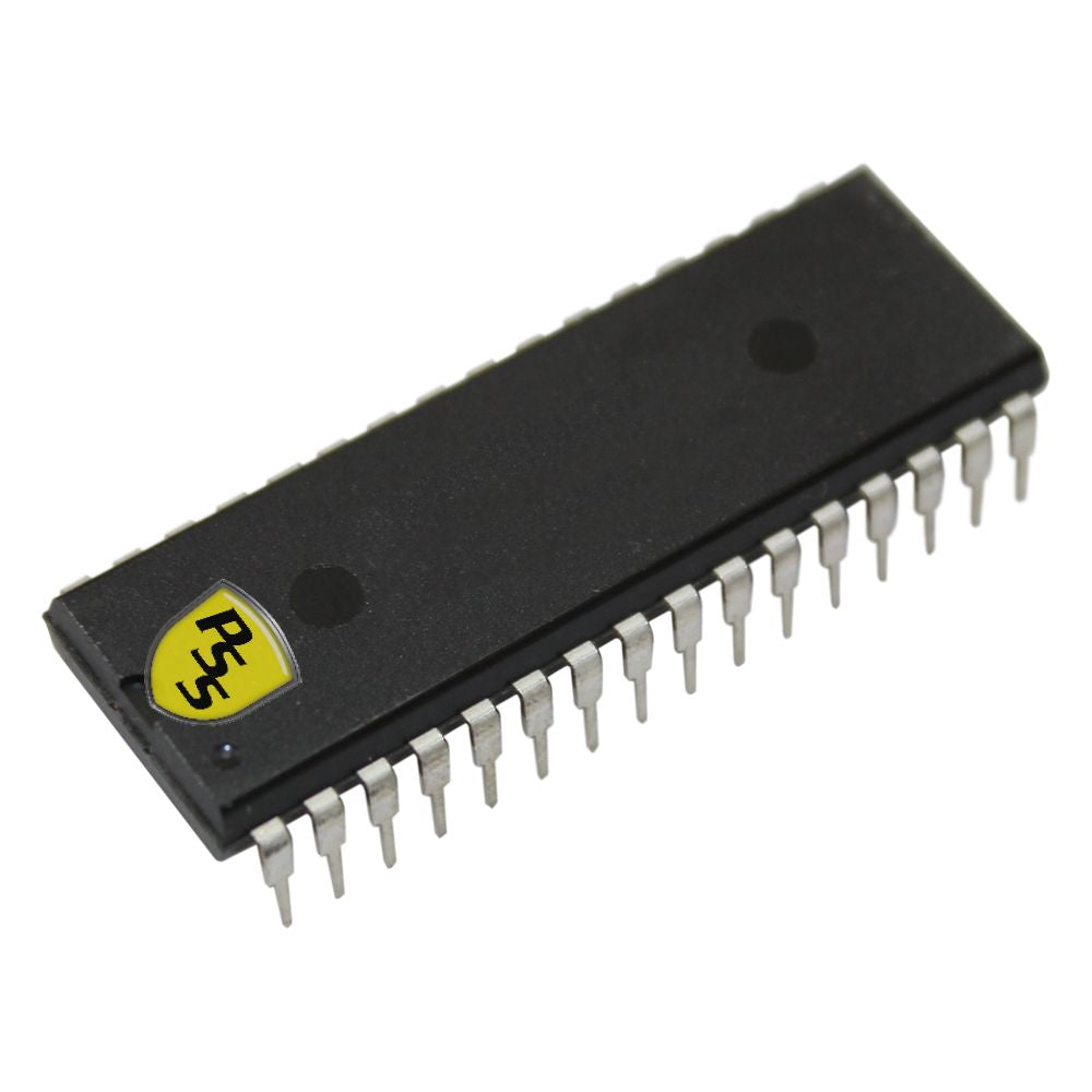 Replacement memory chip 3000 cap