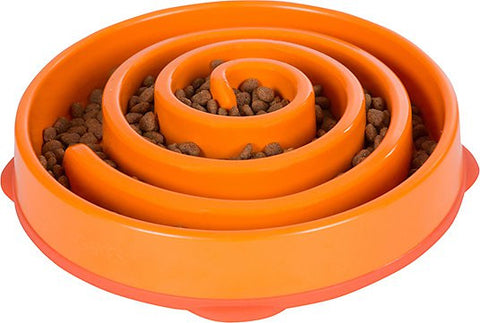 SLOW FEEDER - DOG BOWL