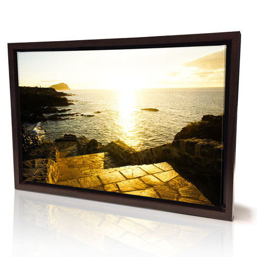 "20 x 30"" Framed Canvas Prints (Black Frame Temp Out of Stock)"