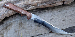 #115 Walnut Clip Point