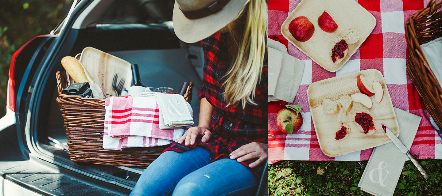 Summer breeze… makes me feel fine… and perfect for picnics