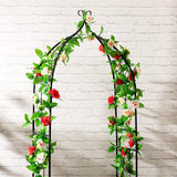 Garden Arch for Climbing Vines and Plants, Outdoor Garden Lawn Backyard, Wedding Party, Black