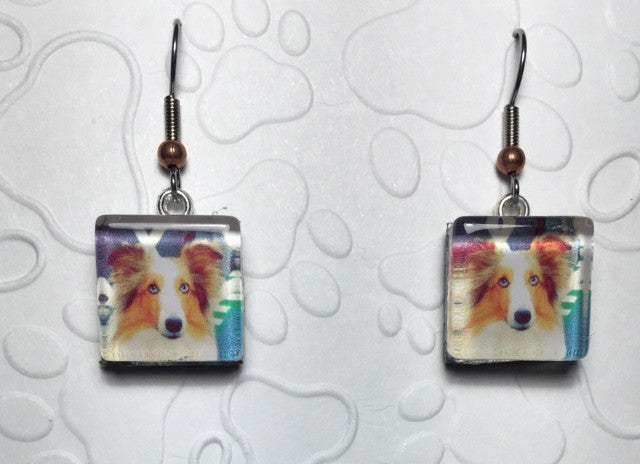 Shetland Sheepdog Earrings -Custom Photo Dog Earrings