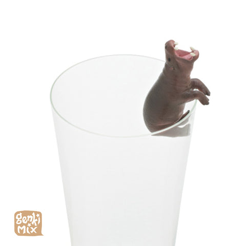 Pygmy Hippo on a glass Blindbox