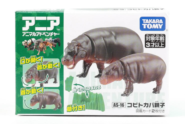 Ania AS-16 Pygmy Hippopotamus