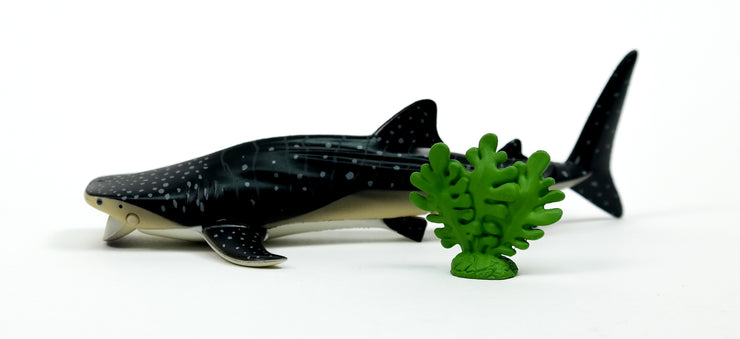 Ania AL-05 Whale Shark (Floating In The Water Ver)
