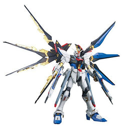 MG STRIKE FREEDOM GUNDAM (SPECIAL VERSION)