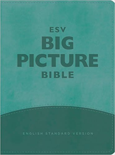 ESV Big Picture Bible (TruTone, Teal)