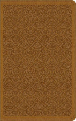 ESV Value Thinline Bible (TruTone, Goldenrod, Vine Design)