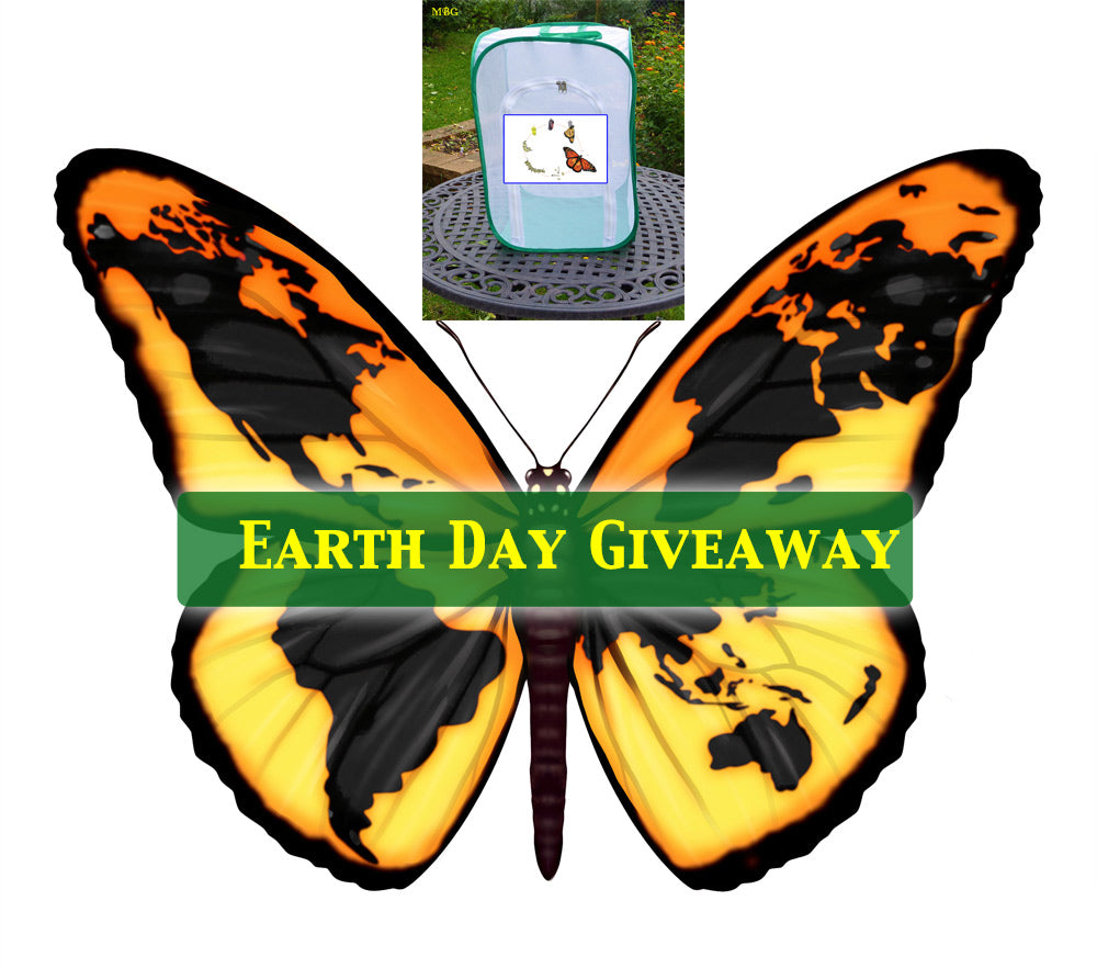 Earth Day Giveaway Monarch Butterfly Shop