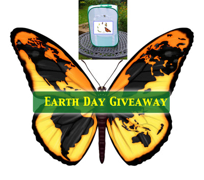 Earth Day Giveaway TALL Baby Bundle- Enter through April 19 🌎