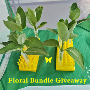 Independence Day Giveaway- Jumbo Floral Tubes + 2 peg racks