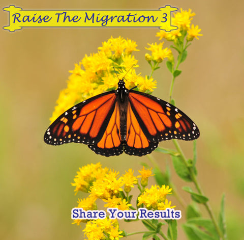 Raise The Migration 3- Post your results, see community results, and share the biggest lesson you learned that will help you and others raising future monarchs through the monarch butterfly life cycle