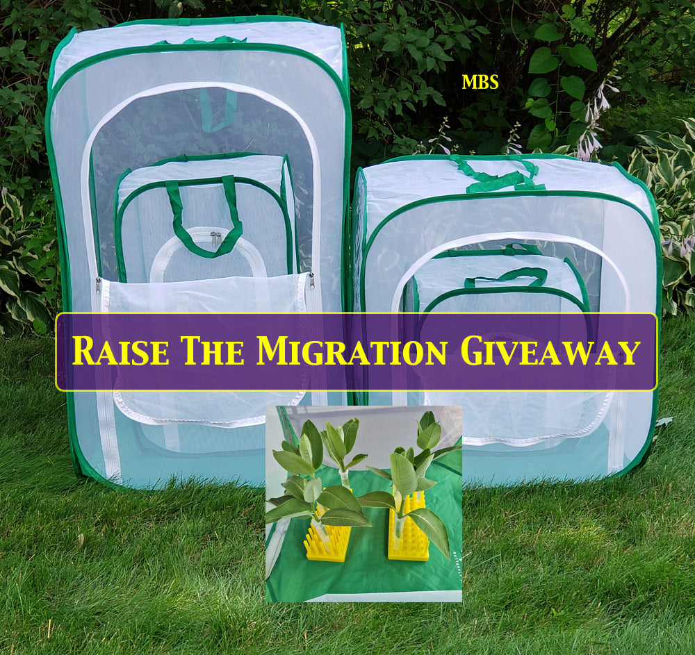 Raise the Migration Giveaway- Choose your cage size plus helpful raising accessories and a raise the migration t-shirt