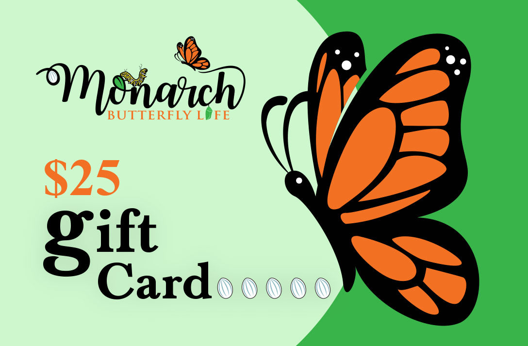 Butterfly Gift Card Collection