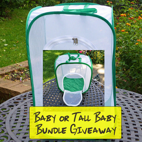 Butterfly Cage Bundle Giveaway