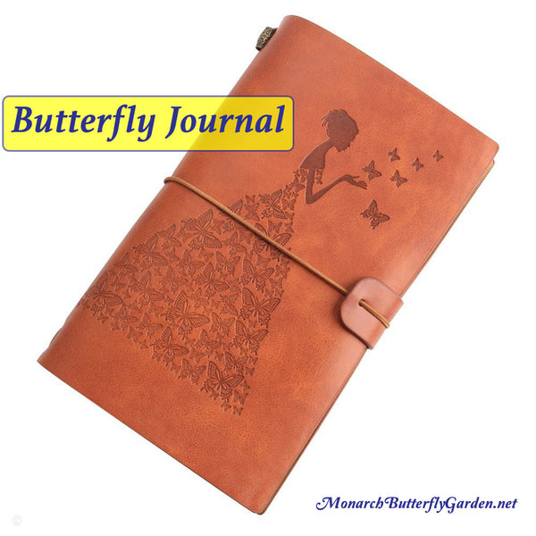 Raising Butterflies Tip 3? Keep a Raising Journal: Record findings (both good and bad) to see what's working and what needs improvement raising monarchs through the butterfly life cycle