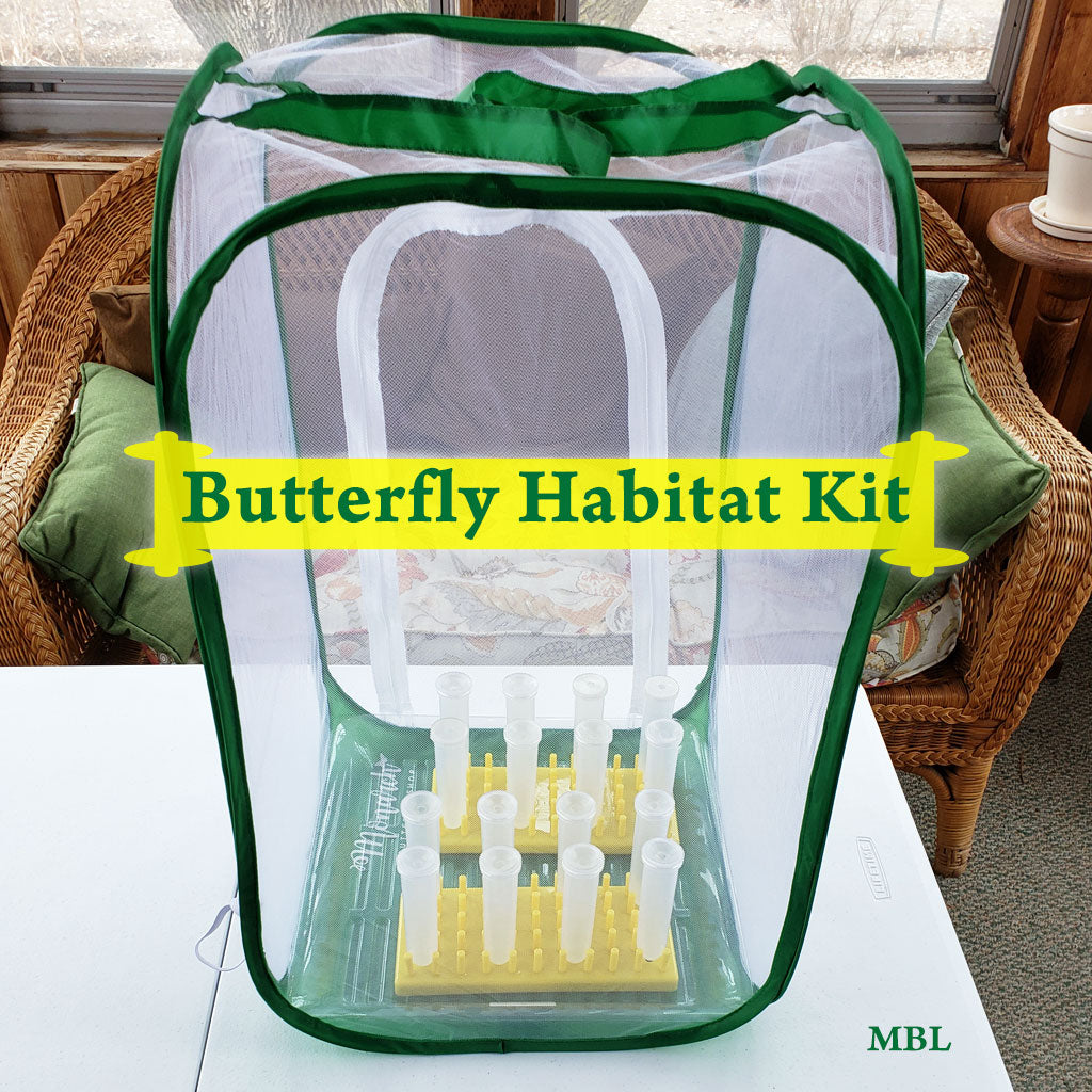 Butterfly Habitat Kit with caterpillar cage, floral tubes and rack for feeding caterpillars, cage liner for easy cleaning