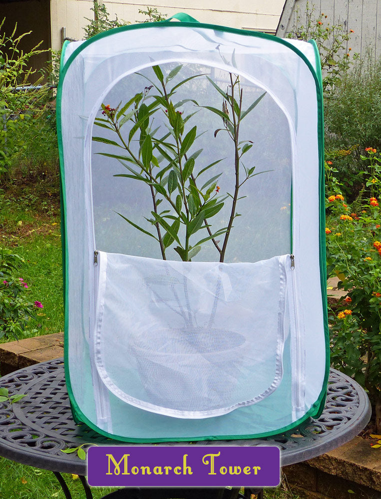 Monarch Tower Butterfly and Caterpillar Cage- Raise Monarchs on Potted Milkweed Plants