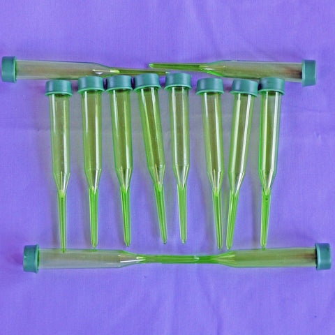 15ml floral tubes with picks to keep milkweed cuttings fresh for raising monarch caterpillars