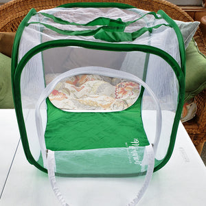 baby cube clear view butterfly cage with see-through mesh and drawbridge door