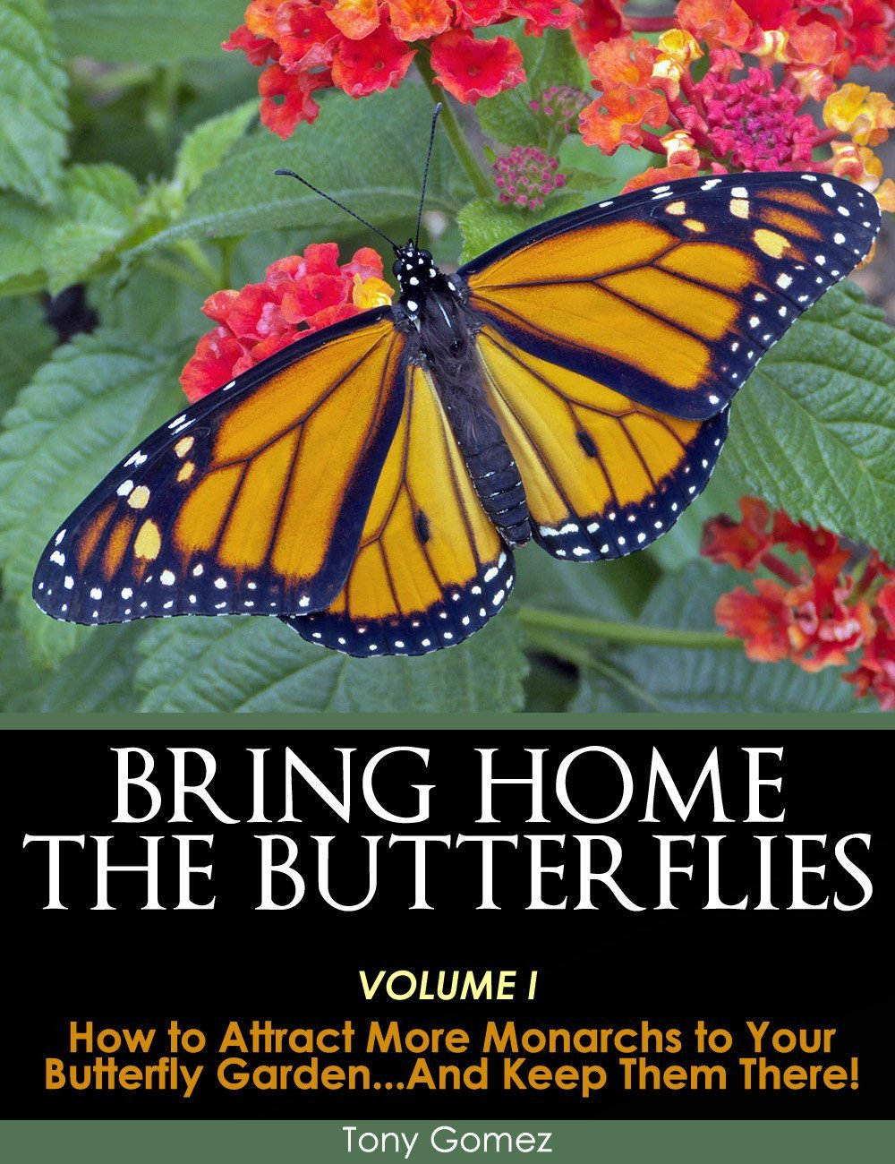 Butterfly Garden Book- Download How to Attract Monarch Butterflies